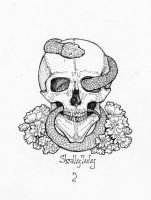 Skull by T-Apostate