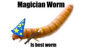 Magician Mealworm! XD by Rayquaza131
