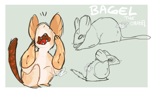 Bagel must be the most paranoid orchel ever by Simonetry