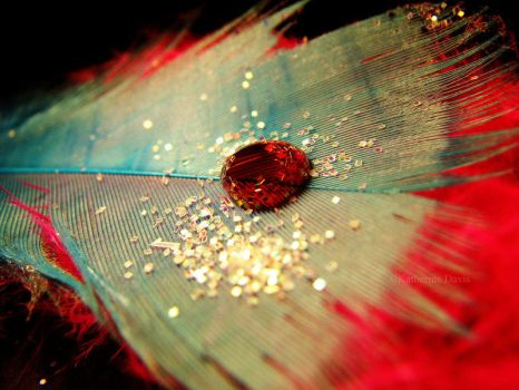 Red Water Drop by KatherineDavis