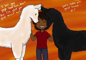 Gabriel the Llama king by asktheDesertStateAZ