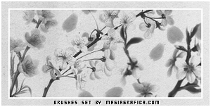 flowers brushes by Magiagrafica