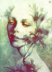 Bloom by escume
