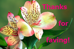 Free To Use - Thanks For Faving Flowers by recycledrelatives
