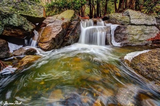 Tomhicken Creek by daimonpaul