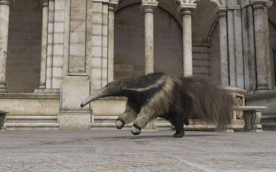 Claustrum Anteater 4 by efredrules