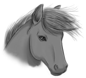 Horse doodle by Bepo89