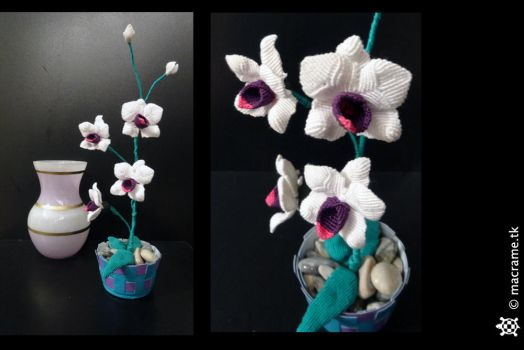 Macrame Orchid by Breach90
