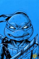 Leonardo TMNT pre Fan Days Con 2012 by Barnlord