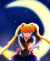 Sailor Moon: In the name of the moon by CarlitoxProductions