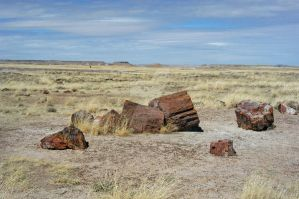 Petrified Forest Nat'l Park 1 by MorrighanGW