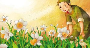 daffodil flower by kinly