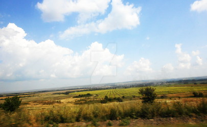 Field. The picture was taken during a trip by KukusKiss