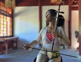 Chinese Erhu by Protozoon75