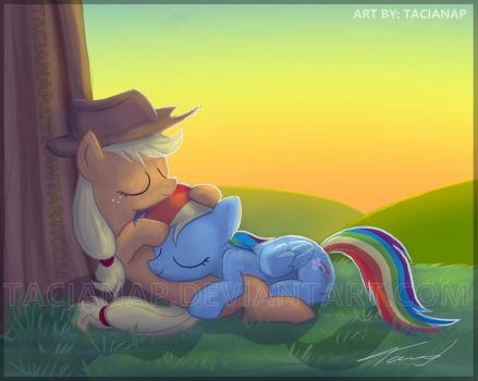 Applejack And Rainbow Dash by Fecu