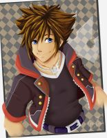 Sora_ Kingdom Hearts by TaleDemon