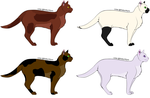 Four Challenge Cats (Not Adoptables!) by Midnytnytmare90