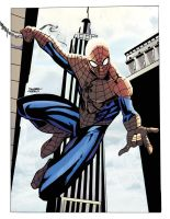 Spider-Man, Noon colors by dtor91