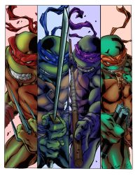 Ninja Turtles-TMNT by RCarter