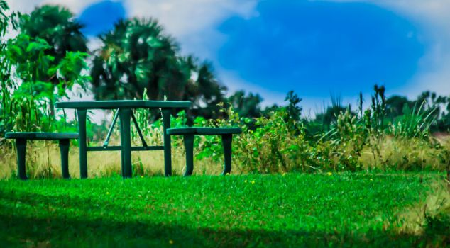 Painted bench by LonelyPhotography