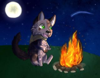 Campfire - Art Trade by GalaxyMelody