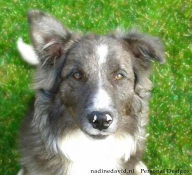 Odin painted by nadinedavid