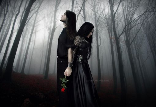 The Raven and the Rose by Finisternis