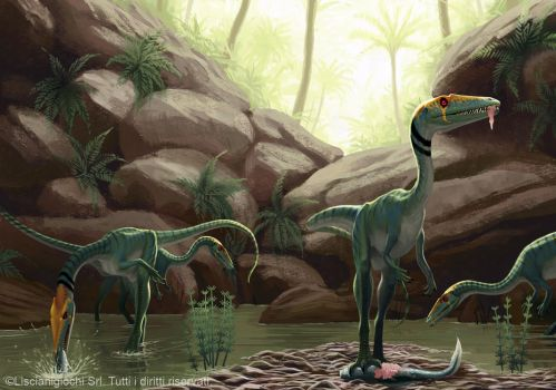 Coelophysis bauri by Akeiron