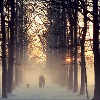 winter's holding my hand by dincha