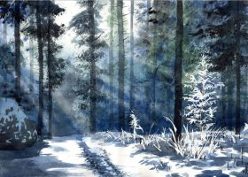 Winter by JoaRosa