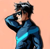 Nightwing by Fawkes29