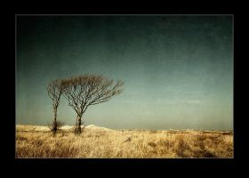 middle of nowhere by raun