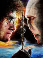 Harry Potter and the Deathly Hallows by princesscleo91