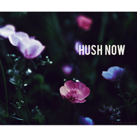 hush now by bailey--elizabeth