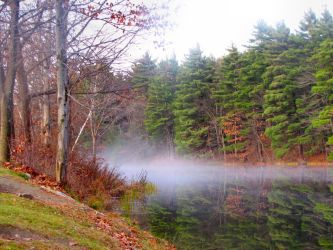 Foggy Autumn Day by craftywench-nh