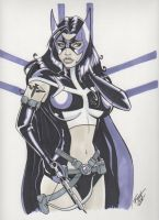 Huntress Commission by PatrickFinch