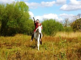 Germanic warrior on horse 2 by Dewfooter