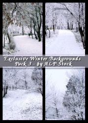 EXCLUSIVE - Winter BGs Pk3 by ALP-Stock