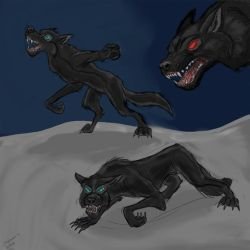 Shadow Werewolf Concept by Shadow-D-Husky