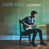 Shawn Mendes - Ruin (Pre-Order Single) by sweetdisastermusic