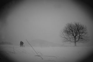 Snowy day by tomsumartin