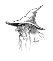 A Shady Wizard by KatLouhio
