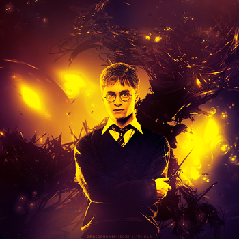 Harry Potter Experiment by Sx2