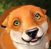 Friendly Fox by FoxTaleStudio