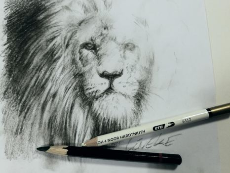 King of the Jungle in Charcoal by Lineke-Lijn