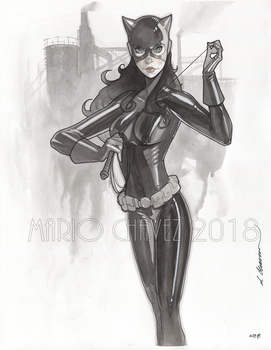 catwoman inks by MarioChavez