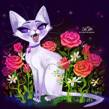 Siamese Lilac by LilaCattis