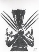 The Wolverine by Turock-X