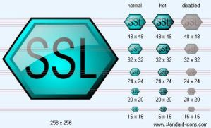 SSL Icon by standard-admin-icons