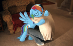 Last Moment With Dashie by BlackGryph0n